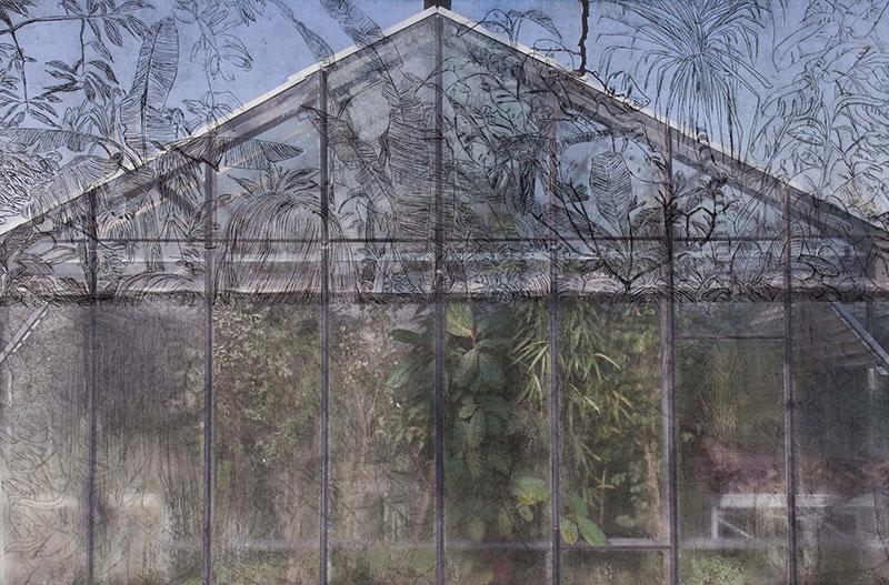 Enzsöly Kinga - Botanikus kert (2015)